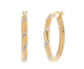 9ct Yellow & White Gold Hoops Earings