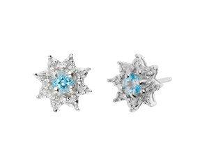 9ct White Gold Aquamarine & Diamond Cluster Earrings